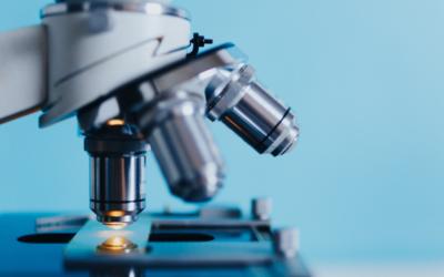 La transplantation intestinale comme traitement expérimental de la maladie de Parkinson